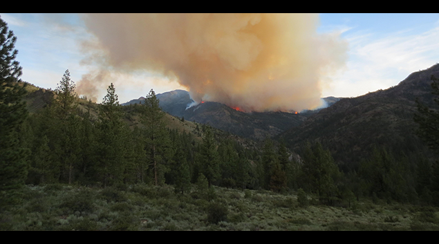 """The Washington Fire located south of Markleeville, CA began on Jul. 19, 2015 and has consumed an estimated 17,790 acres. <em><a href=""""http://bit.ly/1UsZvtJ"""">USFS photo</a></em>."""