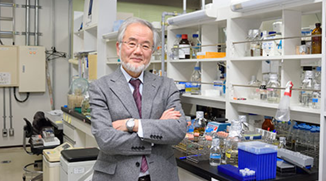 Nobel prize in medicine honors Japanese research on how cells degrade, recycle