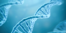 CMS approves Next Generation Sequencing for cancer patients