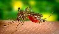 CDC gives hospitals 9 things to consider about Zika and healthcare