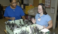 Medicaid expansion boosts employment for disabled