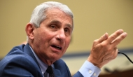"Dr. Anthony Fauci testifies before the House on July 31. (<a href=""https://www.gettyimages.com/search/photographer?assettype=image&family=editorial&photographer=Pool&sort=best#license"">Pool</a>/Getty Images)"