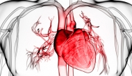 Racial inequities uncovered in hospital admissions for heart failure